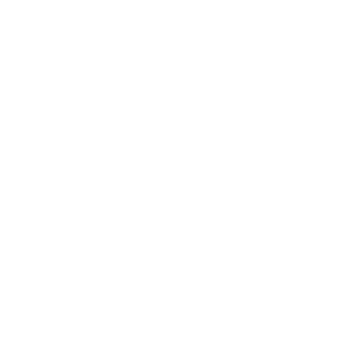 the-leather-and-timber-doctor-logo
